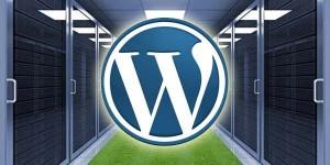 WordPress turbo: ecco tutti i segreti per un sito ultraveloce – VIII