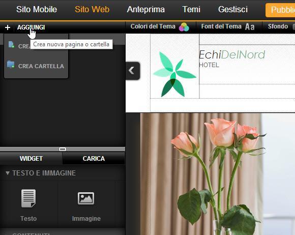 Webmaster con Site Generator