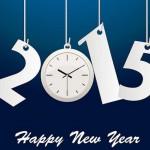 Hosting Solutions ti augura un buon 2015!