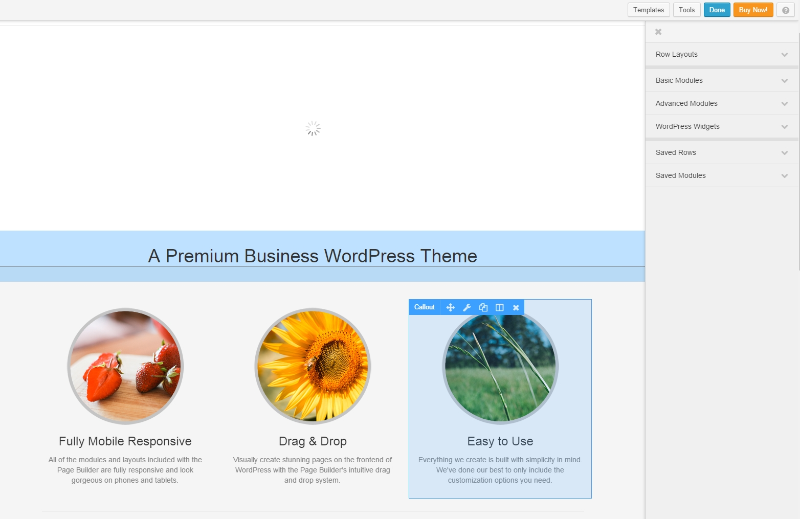 WordPress plugin site builder