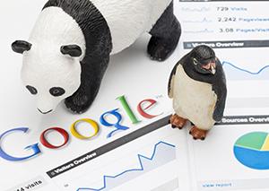 Traffico siti web e penalizzazioni Google