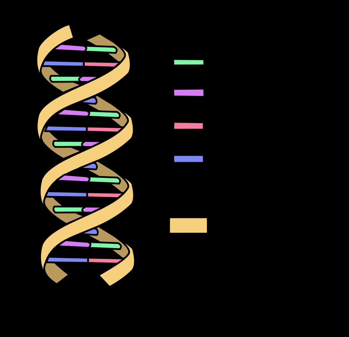 DNA la prossima frontiera dello storage