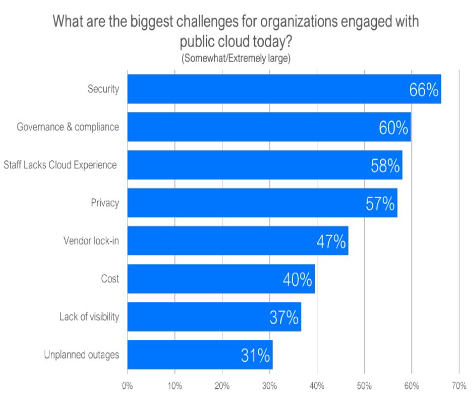 Principali problematiche associate all'utilizzo dei servizi cloud