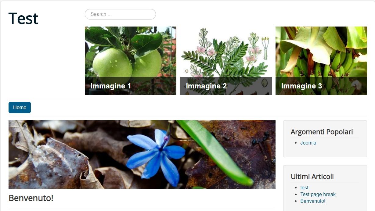 Joomla slideshow